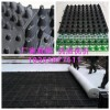 贺州车库顶板排水板%屋面种植蓄水板供应